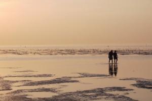 Wattlaufen in Cuxhaven